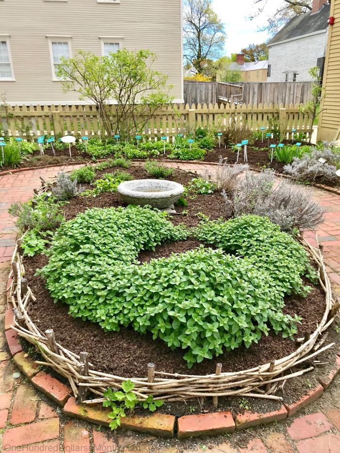 Formal Herb Garden Vine Weave Border Edges One Hundred Dollars A