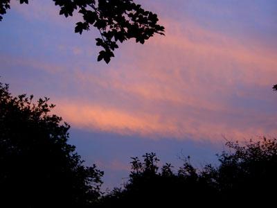 Light over my back garden