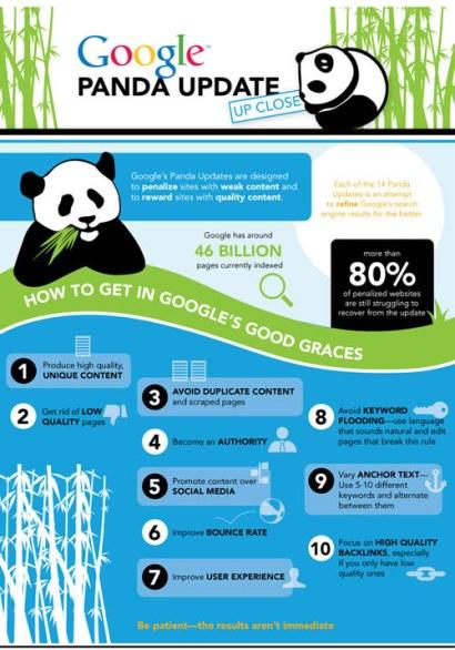 infografica sul panda update