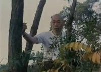 Chan Hon Chung training Tit Sin Kuen