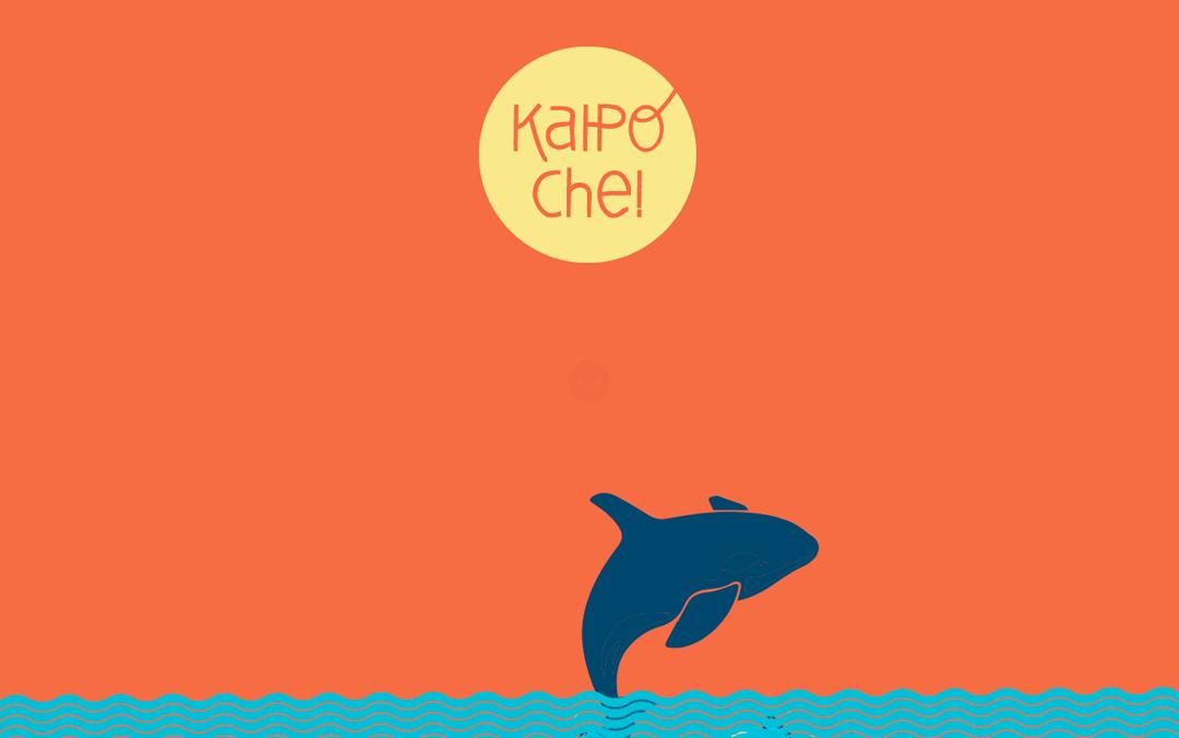 Kaipoche 2014 fly a kite