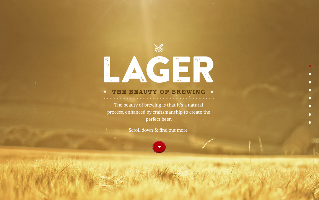 beautyofbrewing_homepage