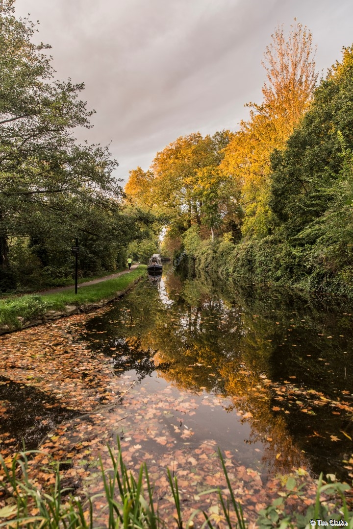 Autumn: Colours reflecting in the Canal.