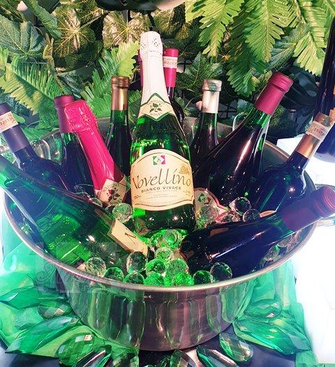 Novellino Wines Celebrates 20 Years
