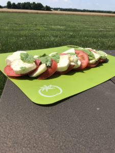 Summer picnic recipe with delicious fresh mozzarella cheese, tomato and basil. This is a simple Italian light lunch or appetizer, like a caprese salad recipe. Fresh and fast lunch ideas #ad @stellacheeses #picnicidea #summerlunch #quicklunchrecipe #quickappetizer #apprecipe