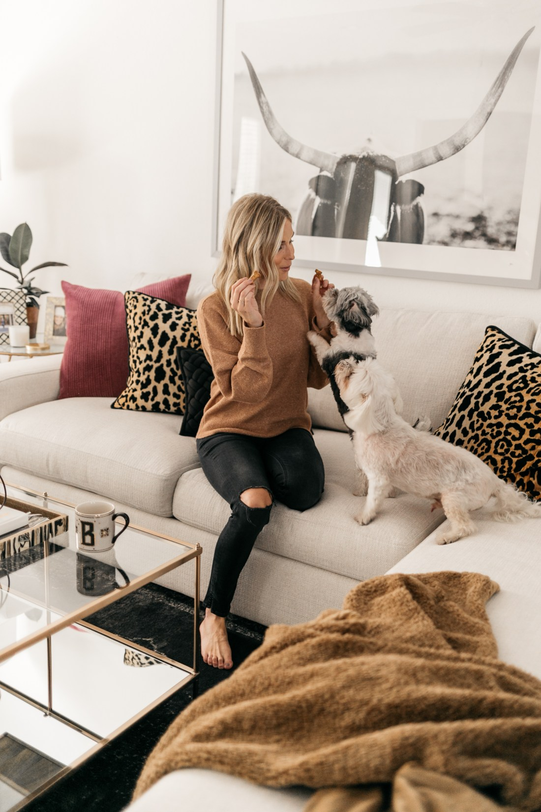 cozy at home. camel trend