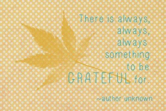 Grateful | One Small Child
