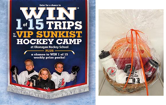 Win a Hockey Rink Survival Kit