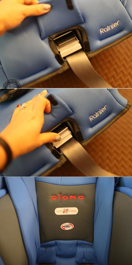 Diono Rainier Convertible + Booster Car Seat