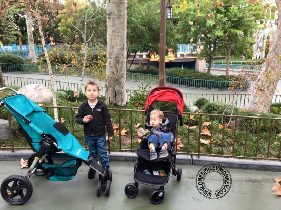 Getting The Most Out of Your Disneyland Visit with Children Ages 5 and Under!