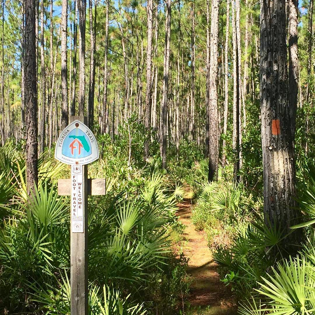 Five Tips for Hiking the Florida Trail