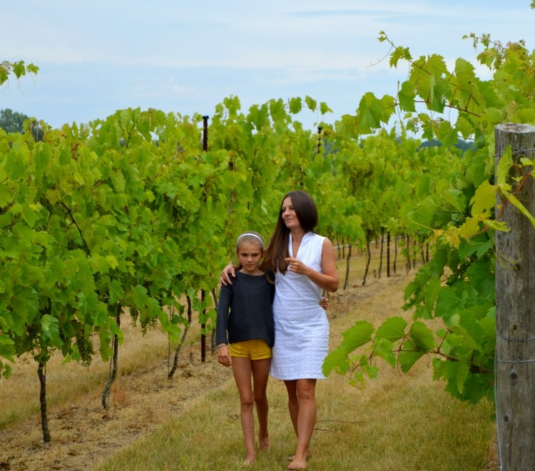 My favourite places: Bonnieheath Estate Lavender and Winery