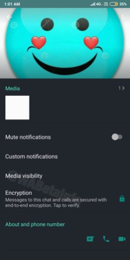 WhatsApp Beta Update