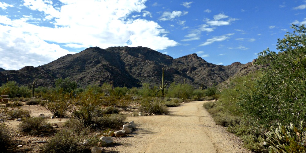 A Hike in White Tank Mountains in Phoenix, AZ || www.onetripatatime.com