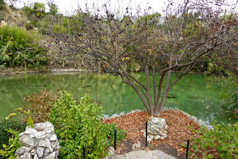 Your weekend guide to san antonio texas usa one trip for Japanese tea garden hours