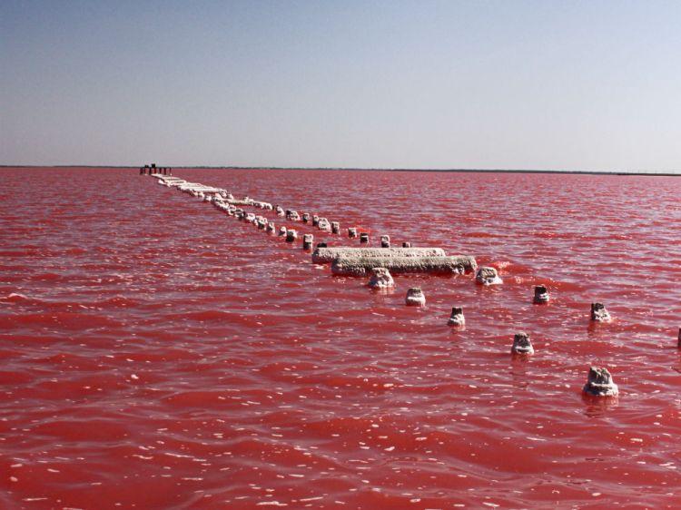Озеро Саки
