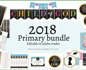 2018 Primary Theme