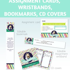2019 Primary Assignment cards