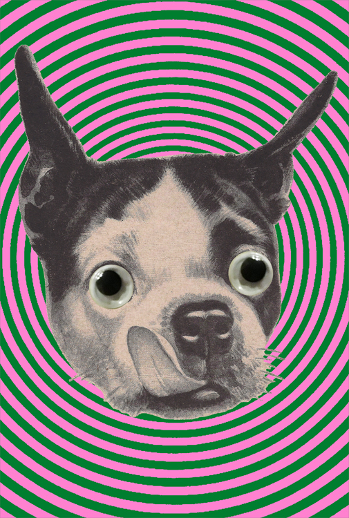 Happy Dog Hypno Collage (Sept 2019)