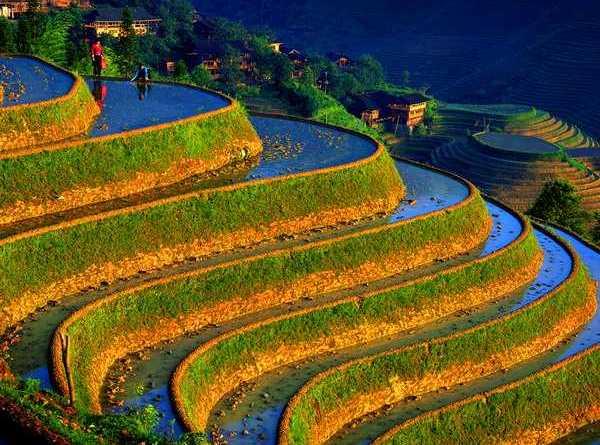 Beautiful Himachal!