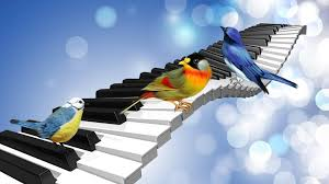 Birdsong can help with speech disorders
