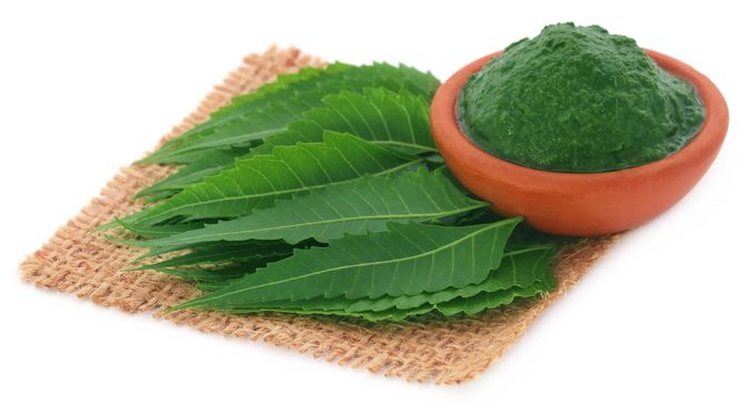 Healing properties of Neem