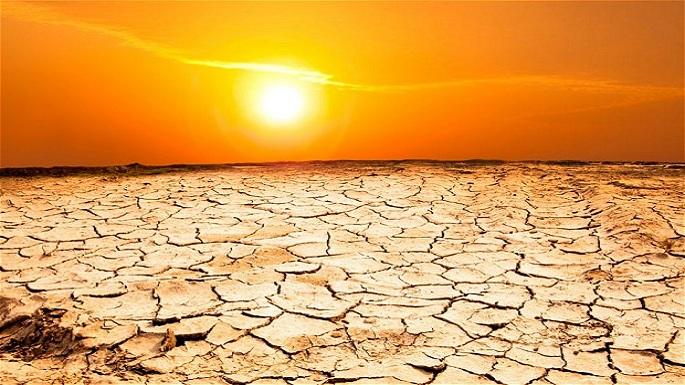 warmest year