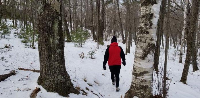winter walks in wisconsin