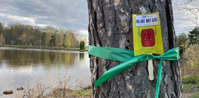 green ribbon around a tree at Wildwood Park