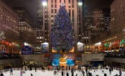 The most magical Christmas trees in the world