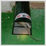 Rat control - Electric rat trap