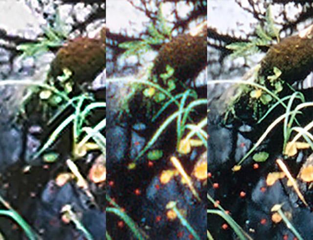 06 slide-samples
