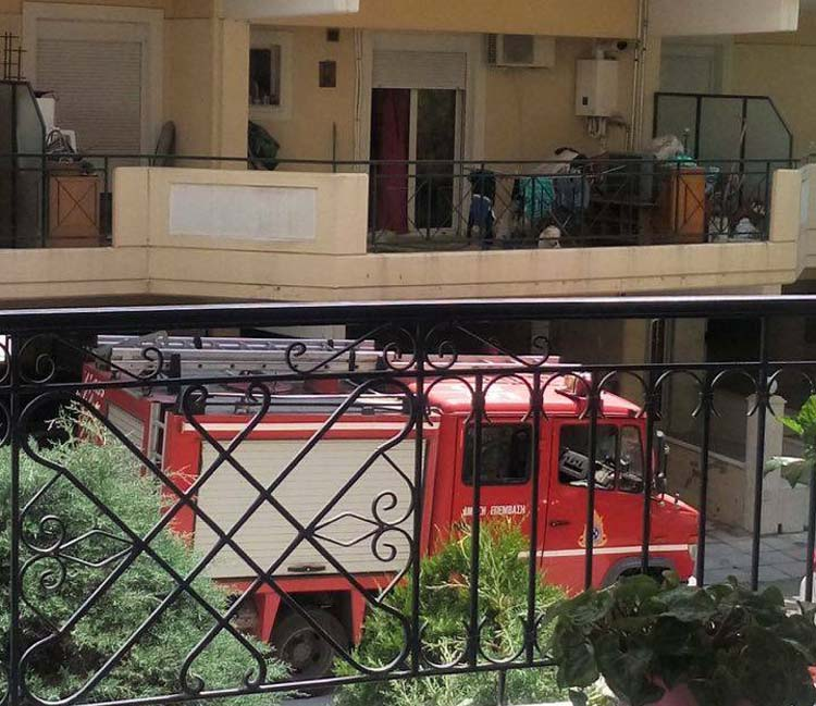 Νέο φίδι λαχτάρησε Λαρισαίους στην Ηπείρου - Επενέβη η Πυροσβεστική (φωτό)