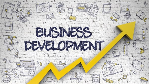A Completed Guide – Business Development Assignment Help ...