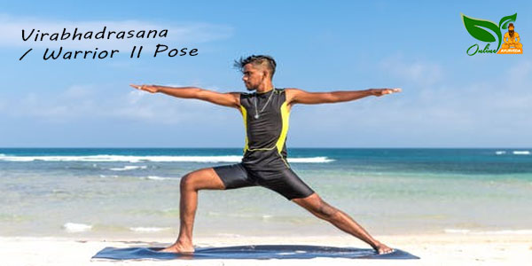 Virabhadrasana or Warrior II Pose image