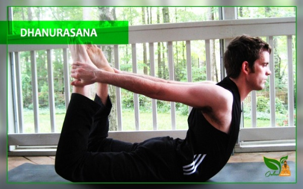 dhanurasana bow pose images