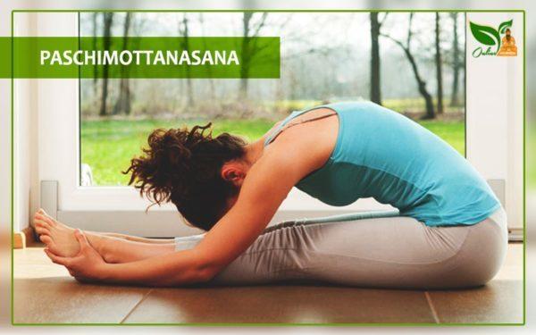 paschimottanasana seated forward bend images