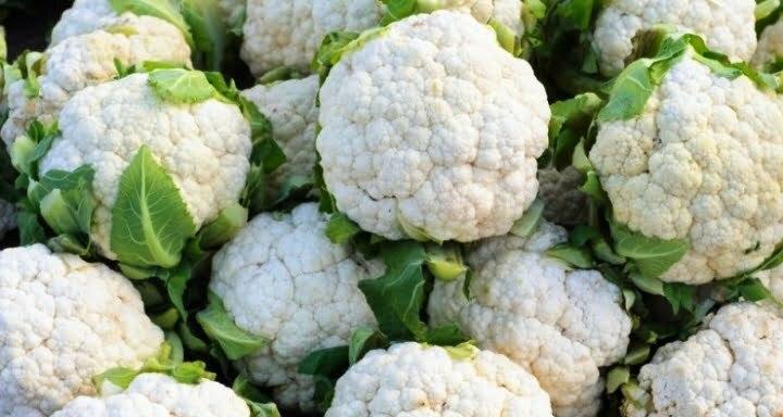 फूलगोभी की खेती कैसे करें How to cultivate cauliflower