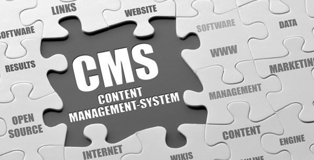Content Management Systems for Ecommerce