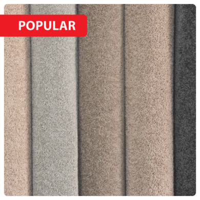 Cheap Carpet Stores   Discount Flooring Shops Online Australia Colour  Various Colours Available Style  Twist Wool Carpet Warranty   15 year wear Warranty Price  Available on request  In Stock  Yes