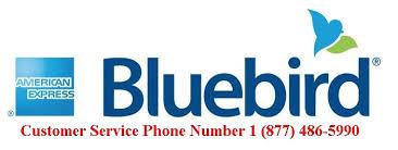 bluebird account