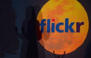 Flickr account