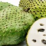 Health Benefits Of Soursop (Graviola) | Contents Of Soursop
