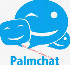 palmchat account