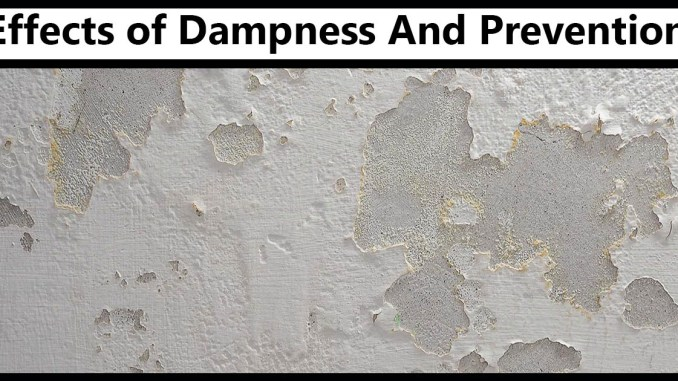 Dampness And Prevention