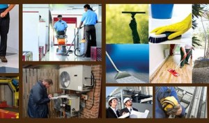 Maintenance of Buildings and Services1