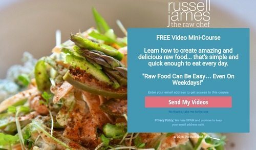 Our comprehensive guide to over 1000 online cooking classes the raw chef is world renowned uk chef russell james the raw chef provides an assortment of high quality raw food courses including the raw chef at home forumfinder Image collections