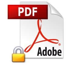 Password Protect A PDF Document