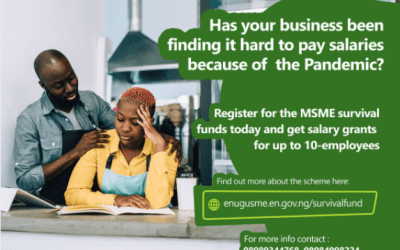 How to Apply for Enugu State/FG MSME Survival Fund Program