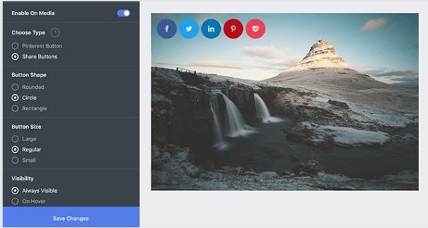 Social Snap Review - Media sharing button